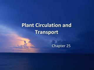 Plant Circulation and Transport