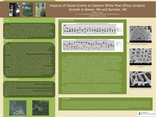 Impacts  of Ozone Events  on Eastern White  Pine ( Pinus strobus )