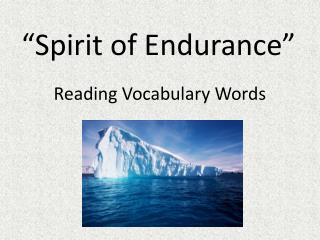 """ Spirit of Endurance """