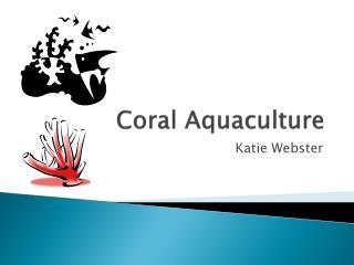 Coral Aquaculture