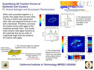 California Institute of Technology MRSEC 0520565