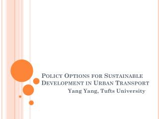 Policy Options for Sustainable Development in Urban Transport