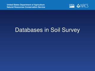 Databases in Soil Survey