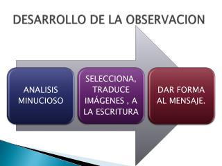 DESARROLLO DE LA OBSERVACION