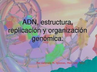 ADN, estructura, replicación y organización genómica.