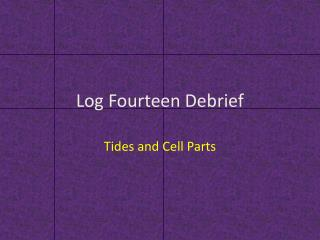 Log Fourteen Debrief