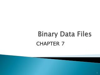 Binary Data Files