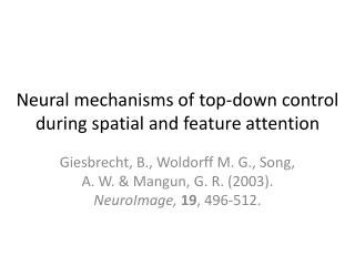Neural mechanisms of top-down control during spatial and feature attention