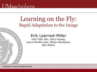 Learning on the Fly: Rapid Adaptation to the Image