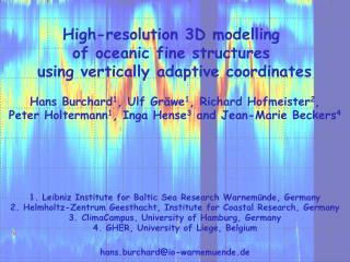 High-resolution  3D  modelling of  oceanic fine structures