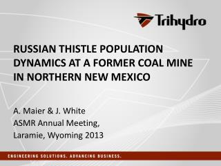 Russian thistle population dynamics at a former coal mine in northern New Mexico