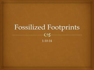 Fossilized Footprints