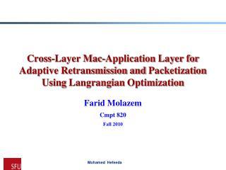 Farid Molazem Cmpt  820 Fall 2010
