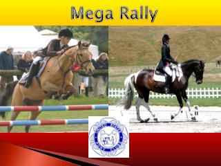 Mega Rally