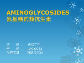 AMINOGLYCOSIDES  氨基糖甙類抗生素