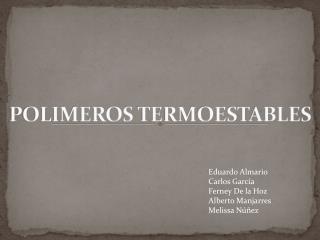 POLIMEROS TERMOESTABLES