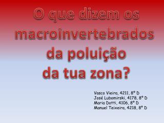 O que dizem  os macroinvertebrados  da poluição d a tua zona?