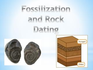 Fossilization and Rock Dating