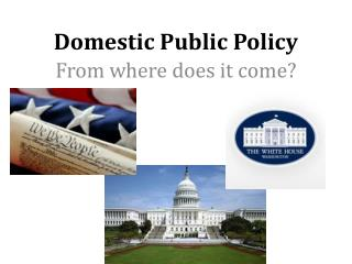 Domestic Public Policy