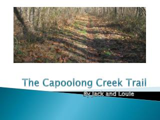 The Capoolong Creek Trail