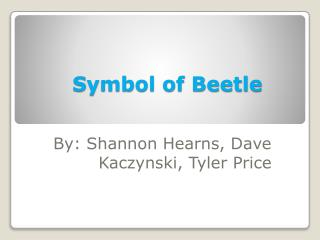 Symbol of Beetle