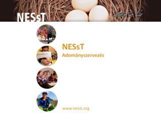 www.nesst.org