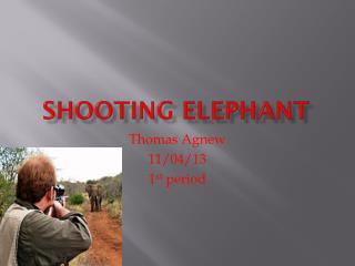 Shooting Elephant