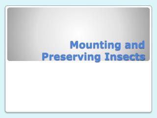 Mounting and Preserving Insects