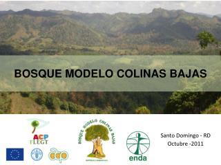 BOSQUE MODELO COLINAS BAJAS