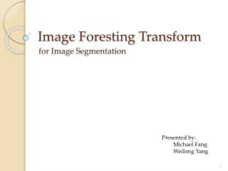Image Foresting Transform