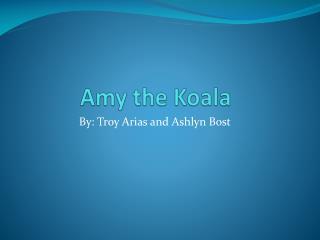 Amy the Koala
