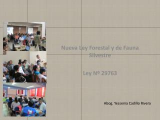 Nueva Ley Forestal y de Fauna  Silvestre Ley Nº 29763