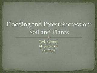 Flooding and Forest Succession: Soil and Plants