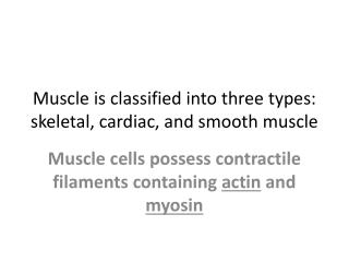 Muscle is classified into three types: skeletal, cardiac, and smooth muscle