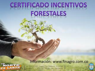 CERTIFICADO INCENTIVOS  FORESTALES