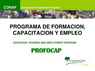 PROGRAMA DE FORMACION, CAPACITACION Y EMPLEO