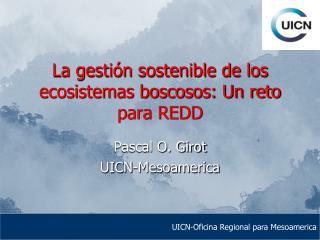La gestión sostenible de los ecosistemas boscosos: Un reto para REDD
