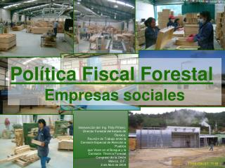 Política Fiscal Forestal Empresas sociales