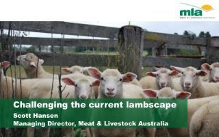 Challenging the current  lambscape Scott Hansen Managing Director, Meat & Livestock Australia
