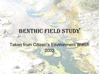 Benthic Field Study