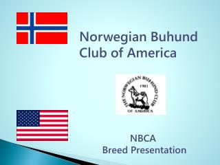 Norwegian Buhund  Club of America