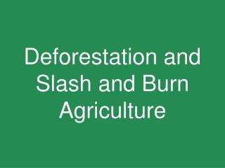 Deforestation and Slash and Burn Agriculture