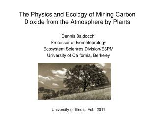 The  Physics  and Ecology of  Mining Carbon Dioxide from the Atmosphere by Plants