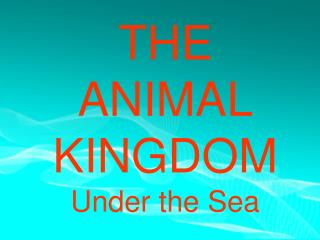 THE  ANIMAL  KINGDOM Under the Sea