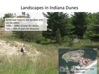 L andscapes in Indiana Dunes