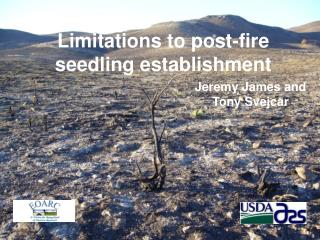 Limitations to post-fire seedling establishment