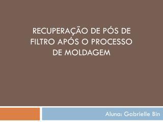 RECUPERAÇÃO DE PÓS DE FILTRO APÓS O PROCESSO DE MOLDAGEM