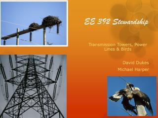 EE 392 Stewardship