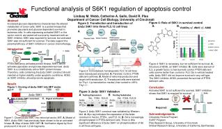 Functional analysis of S6K1 regulation of apoptosis control