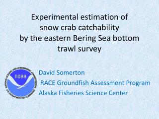 Experimental estimation of  snow crab  catchability by the eastern Bering Sea bottom trawl survey